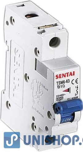Jistič TSM6-63 230V/10A B 1fázový na DIN lištu; L574